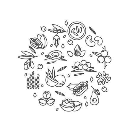 Illustration pour Superfood vector concept. Berries, nuts, vegetables fruits and seeds. Organic superfoods for health. Detox and weightloss supplements. - image libre de droit