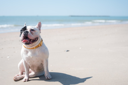 Photo for French happy face on the beach. - Royalty Free Image