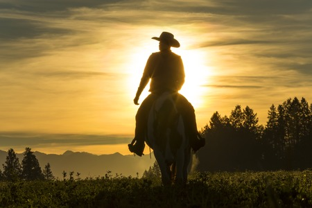Photo pour Cowboy riding across grassland with moutains behind, early moring, British Colombia, B.C., Canada - image libre de droit