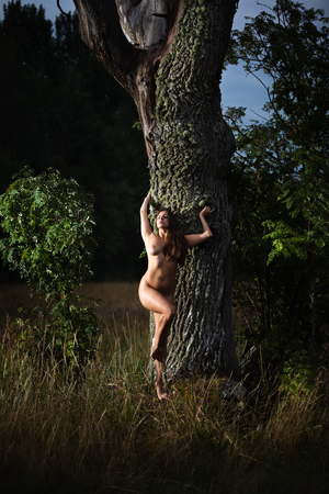 Photo for Healthy lifestyle and beauty concept. Naked girl outdoor. Young nude woman enjoying nature standing near old tree. - Royalty Free Image