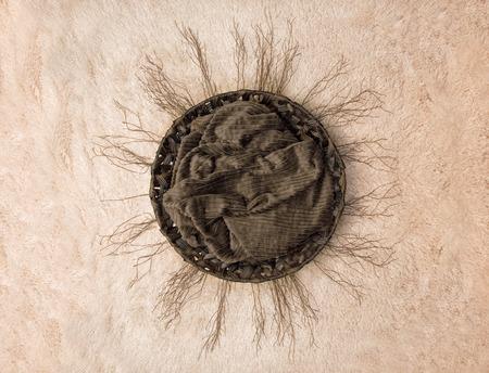 Foto de Newborn Digital Backdrop - Twigs in a Circle - Imagen libre de derechos