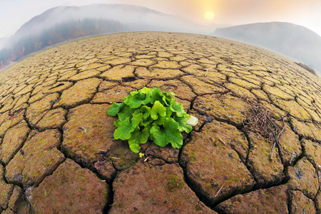 Foto de dry land of the reservoir in the Carpathian Mountains ecological desert symbolizes human life in the world of industrial revolution in countries with a low level of culture of behavior in nature  - Imagen libre de derechos