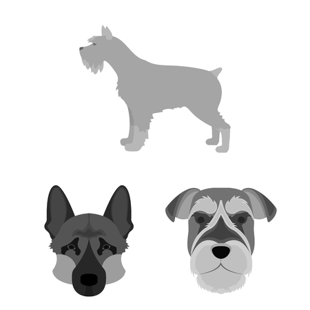 Vector design of cute and puppy symbol. Set of cute and animal stock vector illustration.