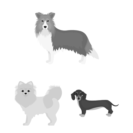Vector illustration of  cute  and  icon. Collection of  cute  and  vector icon for stock.