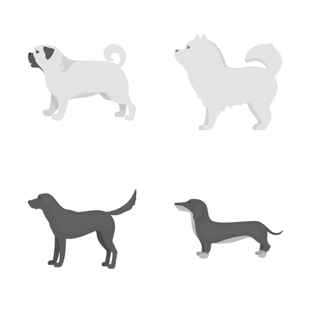 Vector illustration of cute and puppy. Set of cute and animal vector icon for stock.