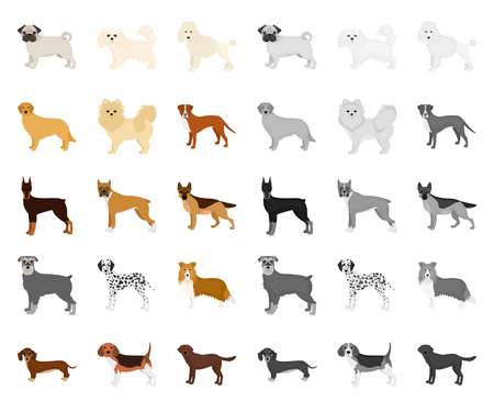 Dog breeds cartoon,mono icons in set collection for design.Dog pet vector symbol stock web illustration.