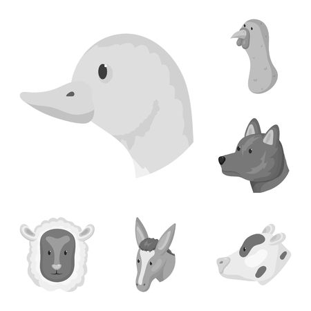 Isolated object of countryside and homestead symbol. Collection of countryside and breeding vector icon for stock.