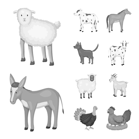 Vector design of homestead and agriculture icon. Set of homestead and kitchen  stock symbol for web.