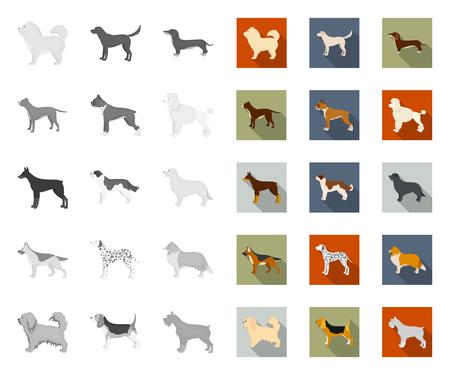 Dog breeds mono,flat icons in set collection for design.Dog pet vector symbol stock web illustration.
