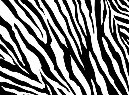 Illustration for Zebra Pattern - Royalty Free Image