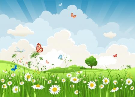 Illustration pour Summer sunny landscape  - image libre de droit