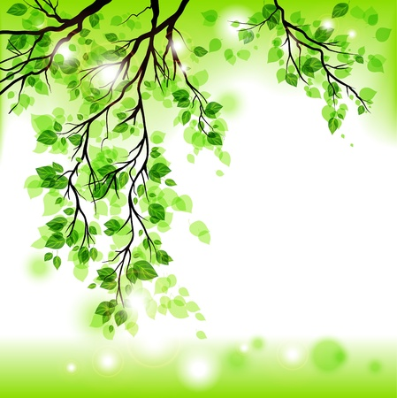 Illustration pour Spring background  - image libre de droit