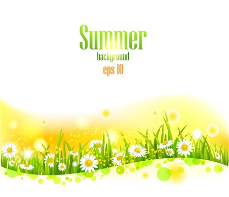 Illustration pour Bright summer flowers  background with space for text. - image libre de droit