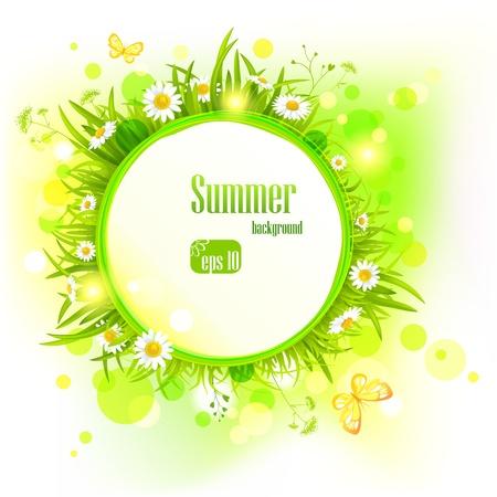 Illustration pour Summer light background with  daisies.  - image libre de droit