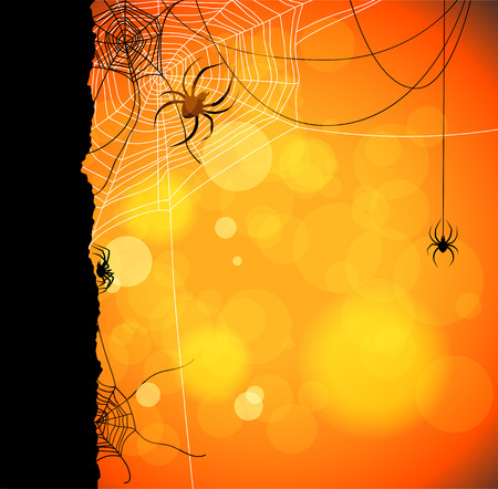 Autumn orange background with spiders and web