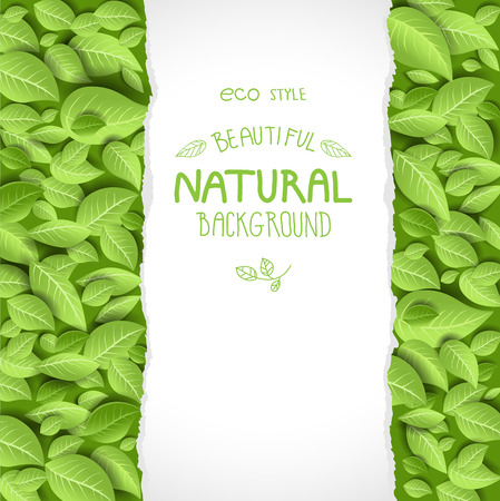 Illustration for Eco style background with leaves. Place for text - Royalty Free Image