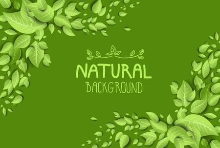 Illustration for Green eco background with fresh leaves.Place for text - Royalty Free Image