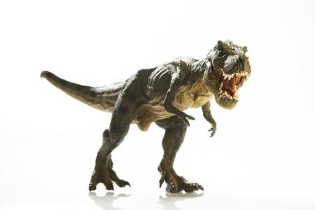 Foto de Isolated dinosaur on white background - Imagen libre de derechos