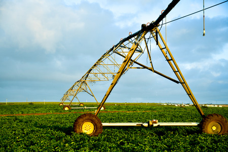 Photo pour Irrigation pivot watering sugar cane fields - image libre de droit