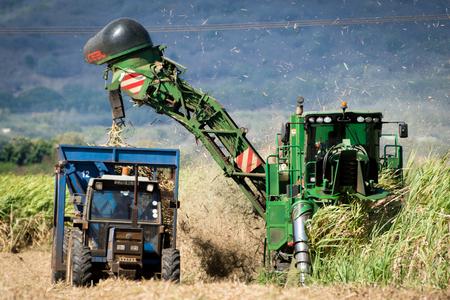 Photo pour Mechanical harvesting of sugarcane - image libre de droit