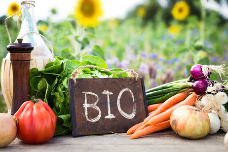 Foto für organic vegetables on a table, concept organic farming, agriculture and healthy lifestyle - Lizenzfreies Bild