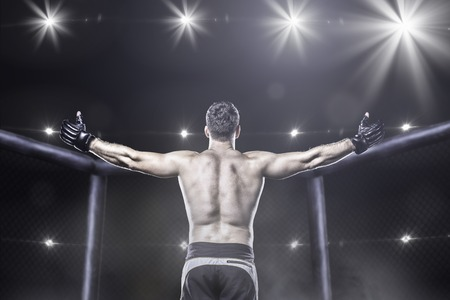 Photo for Mma fighter in cage after victory, behind view - Royalty Free Image