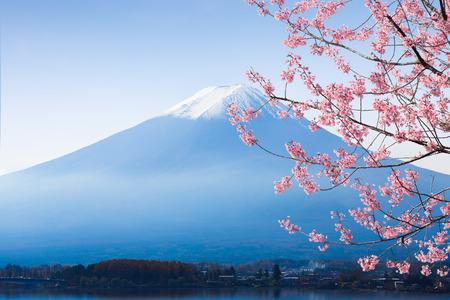 Mt. fuji and cherry blossom at lake kawaguchiko