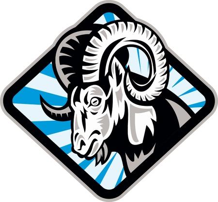 Illustration for Illustration of a bighorn ram sheep goat set inside diamond shape on isolated background  - Royalty Free Image