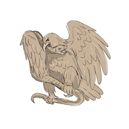 Illustration pour Illustration of a serpent in the clutches of an eagle with it's beak on snake's head done in drawing sketch style. - image libre de droit