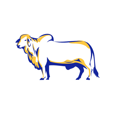 Ilustración de Illustration of a Brahman Bull Side View on isolated white background done in Retro style. - Imagen libre de derechos
