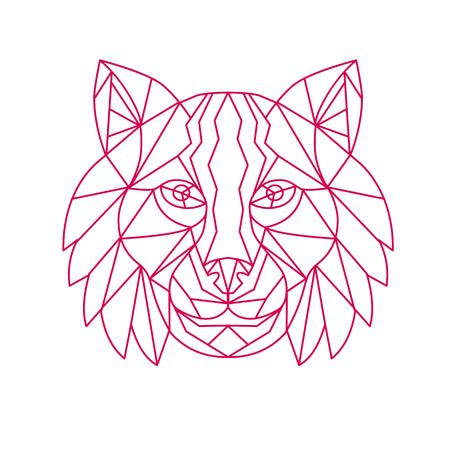 Ilustración de Mono line illustration of a Lynx Bobcat, medium-sized wild cat, head viewed from front on isolated background. - Imagen libre de derechos