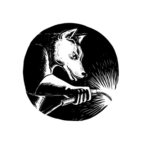Illustration for Scratchboard style illustration of a Dingo Dog wolf Welder welding viewed from side set inside circle done on scraperboard on isolated background. - Royalty Free Image