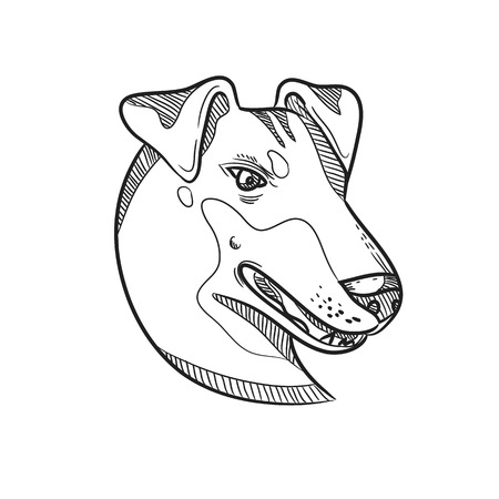 Ilustración de Drawing sketch style illustration of head of a Manchester Terrier, a breed of dog of the smooth-haired terrier type viewed from side on isolated white background in black and white. - Imagen libre de derechos
