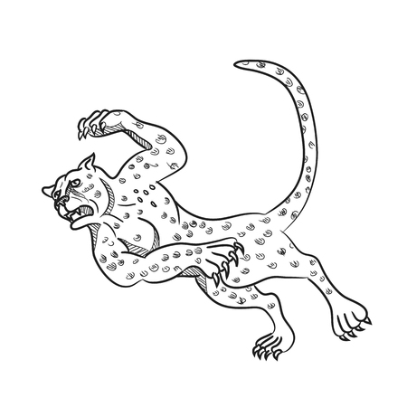 Illustration pour Cartoon style illustration of a cheetah running, tripping and then falling down done in black and white on isolated background. - image libre de droit