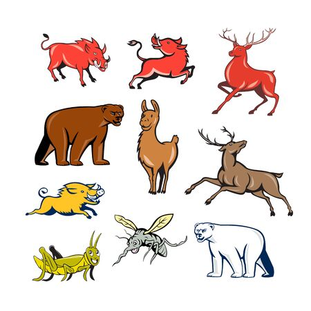 Ilustración de Set or collection of cartoon character mascot style illustration of wildilfe animals like wild boar, razorback, red deer, reindeer, llama, alpaca, bear, polar bear, grasshopper and mosquito on isolated white background. - Imagen libre de derechos