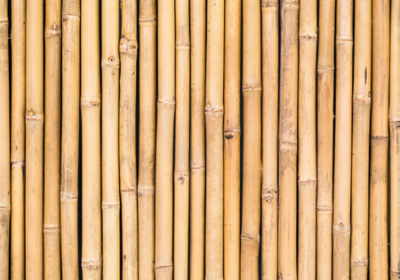 Photo for bamboo texture pattern backgroung - Royalty Free Image