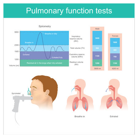 Illustration pour Pulmonary function tests. Testing for volume of air in the lungs during breathe in and exhaling fully. - image libre de droit