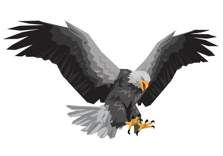 Illustration pour Bald eagle flying winged swoop polygon on white background vector illustration. - image libre de droit