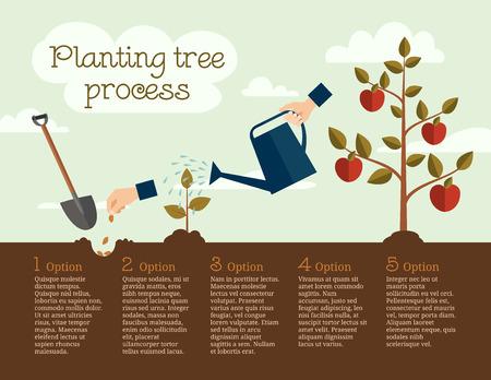 Illustration pour Timeline Infographic of planting tree process, flat design - image libre de droit