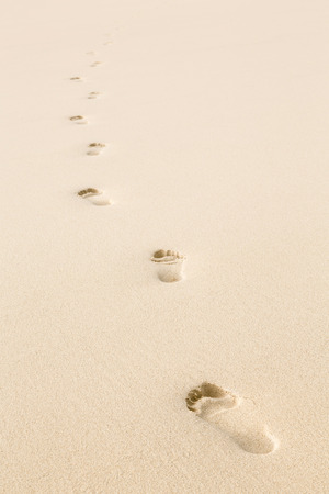Foto de Footprints in beach sand with copy space - Imagen libre de derechos