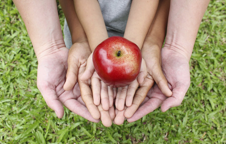 Photo pour Adult hands holding kid hands with red apple on top - image libre de droit