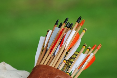 Photo for quiver of arrows - Royalty Free Image