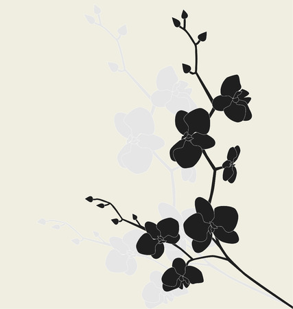 Stylized orchid branch, vector illustration