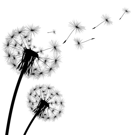 Ilustración de black silhouette with flying dandelion buds on a white background - Imagen libre de derechos
