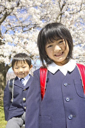 Elementary school men and women stand in front of the cherry blossoms
