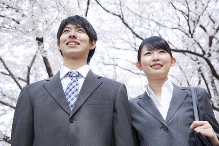 Foto de Businessman and OL stare Sakura - Imagen libre de derechos