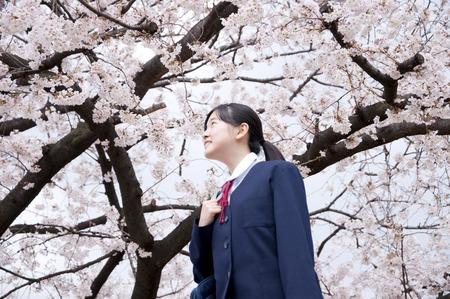 Junior high school girls that walk under the cherry tree