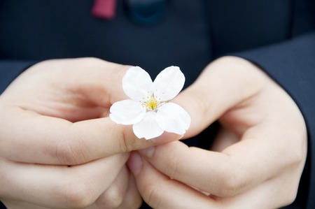 Hand of junior high school girls with the petals of cherry blossoms