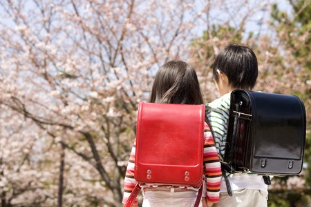 Rear View of elementary school carrying a bag