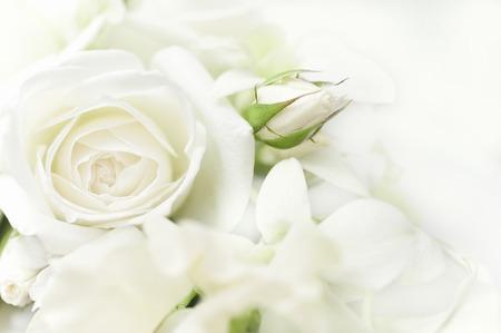 Photo pour White rose bouquet - image libre de droit